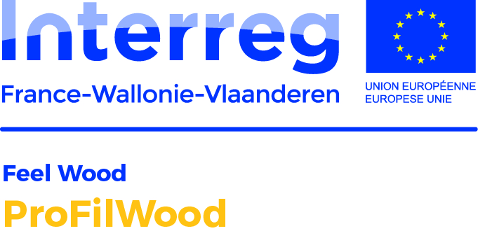 LogoProjets Feel Wood ProFilWood