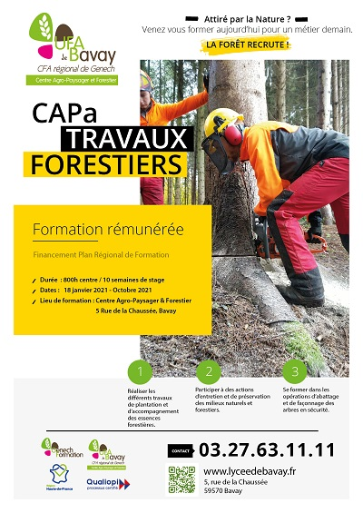 affiche CAPa Travaux Forestiers